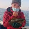 1月15日(金)【清和丸III】寒イサギぐれ等&青物狙い 【清和丸Ⅶ】くろべ船長の試し釣りの画像