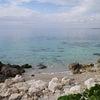 久しぶりのドライブ。ターラントの近くの海へ。の画像