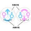 男らしさと女らしさ|コスモ・ライフォロジーの画像