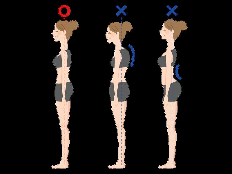"""効果のわかるストレッチをするためには、 まず""""姿勢を整える""""ことが大事です"""