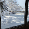 農園内の池が完全に凍りました!の画像