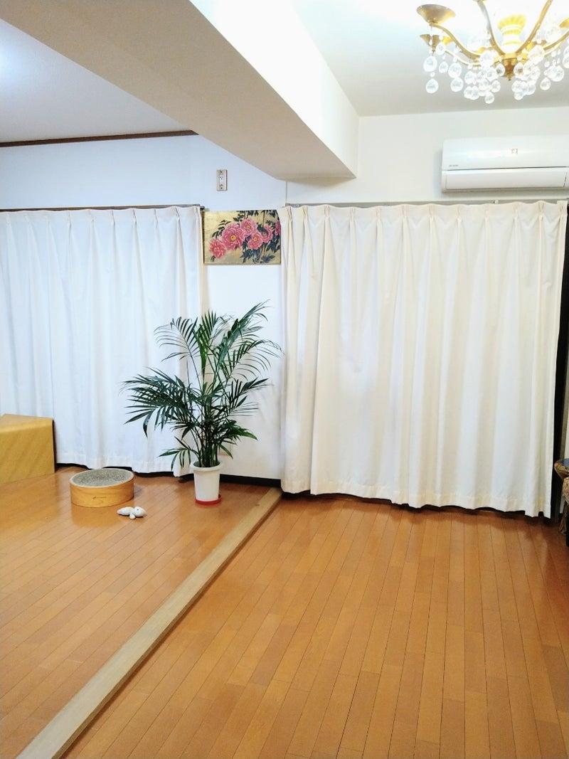 リスト 秋子 ブログ ミニマ