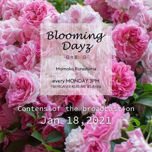 Blooming Days -日々是好日-|2021.1.18|FMひがしくるめの画像