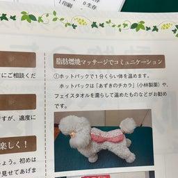 画像 今月の動物看護士さんの雑誌に の記事より 3つ目