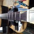 Cattle Guitar キャトルギター