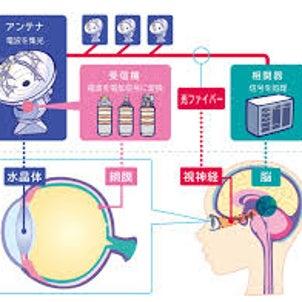 【電磁波と眼と抜け毛】の画像