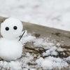 雪の予報が出たら実践したい管理会社が教える住居用雪対策の画像