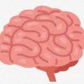私と音楽〜二胡編〜Vol.50  あなたが疲れているのは肉体疲労ではなく、脳内疲労だー!