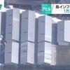 ▼唸声鳥インフル現場のストリートビュー/千葉、アヒル農場で鳥インフル・・・の画像