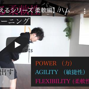 【動きに活きる柔軟性】自宅で運動神経を鍛えるシリーズの柔軟性編 その1の画像