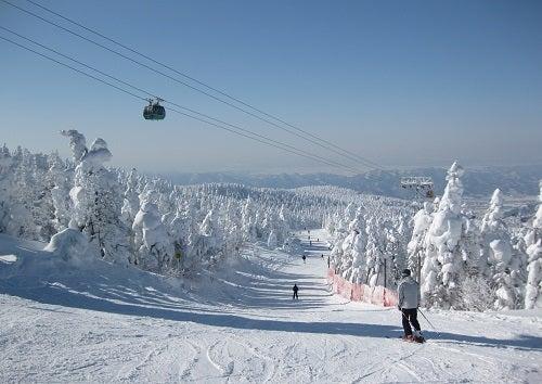 蔵王 温泉 スキー 場