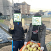【1/11~1/16】ネギ焼きの進化系・・・ネギ焼きロール!中には、とろ~りチーズ入りです!の画像