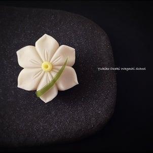 和菓子教室♪作り方動画公開中!練り切り水仙☆花びらを美しく作るコツを覚えよう♪の画像