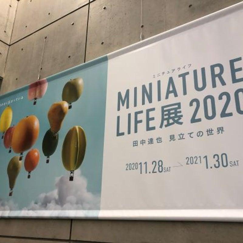 ミニチュア ライフ 展 田中 2020 達也