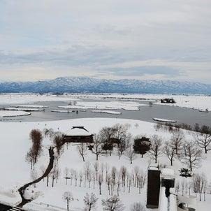 新潟散歩 北区 冬の福島潟へ行くの画像