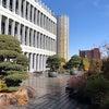 【目黒区総合庁舎】の屋上庭園(目黒十五庭)の画像