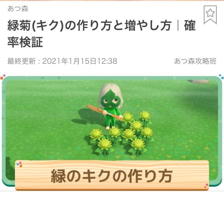 あつ 森 緑 の 菊