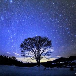 ★樹木と雪原と北極星★2020.12.24/福井県大野市 【北極星を探してみよう!】...の画像