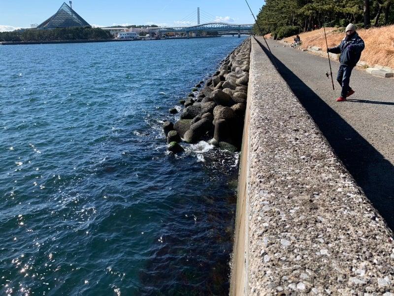 釣り場 八景島 八景島対岸(横浜市) 神奈川発!釣りチュー海釣り場情報