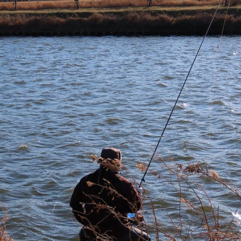 釣り 竿 鮒