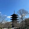 京都から帰りましたの画像