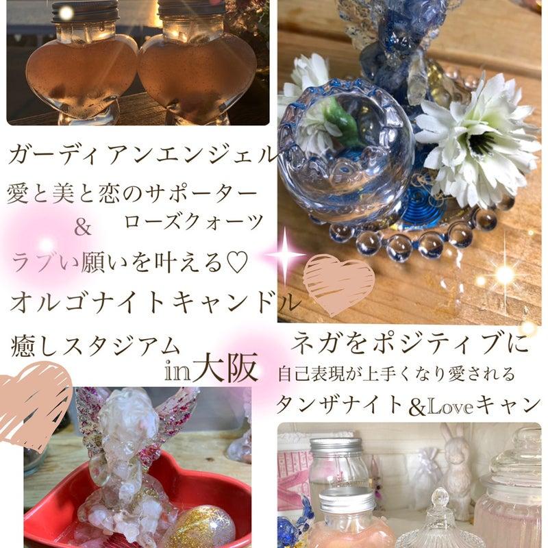 ブログ riku リクガメ 人気ブログランキングとブログ検索
