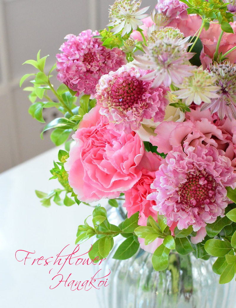 した 姫路 恋 みたい な を 花束