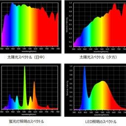 画像 4DSヨガと波動器セミナーIN新潟6月19日 の記事より