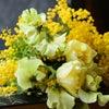 原点へ帰ろう|花のある日常の画像