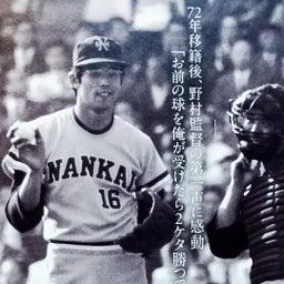 画像 大阪に、ナンバ球場にノムさん帰る! の記事より 18つ目