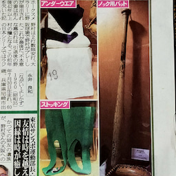 画像 大阪に、ナンバ球場にノムさん帰る! の記事より 11つ目