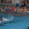 最後の水泳教室が行われました。の画像