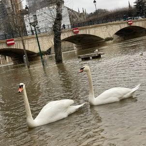 パリは動く祝祭〜 Quelle chanceの画像