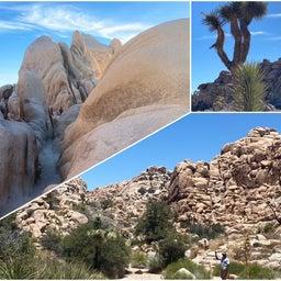 画像 面白い形の巨大岩❗️ジョシュアツリー国立公園Part2 の記事より