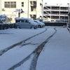 雪、雪、雪!の画像