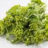 3月のお料理教室のご案内☆(春野菜でデトックス)の画像