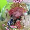 雛人形《京町小路》の画像