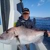 錦江湾口ノッコミ真鯛好調!真鯛良型、ブリ、メジナ、モアラ 鹿児島錦江湾海晴丸の画像