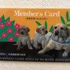 北海道盲導犬協会の画像