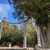 神社が一直線に並んでいる奈良・レイライン(春日大社~)の画像