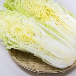 デトックス野菜・白菜!の画像