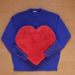 大動脈解離 心臓センターの見解