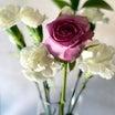 癒しの空間♡チェリまほ と Flower♡