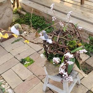 ヒデちゃん先生の「ナチュラルな春の鳥かご」の画像