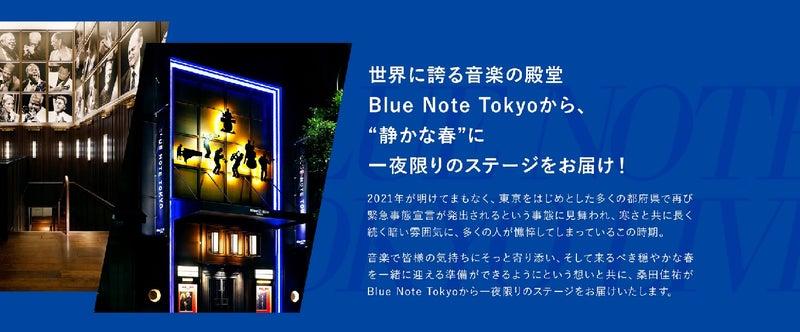 静かな春の戯れ | When you wish upon a Star ☆ from Yokohama
