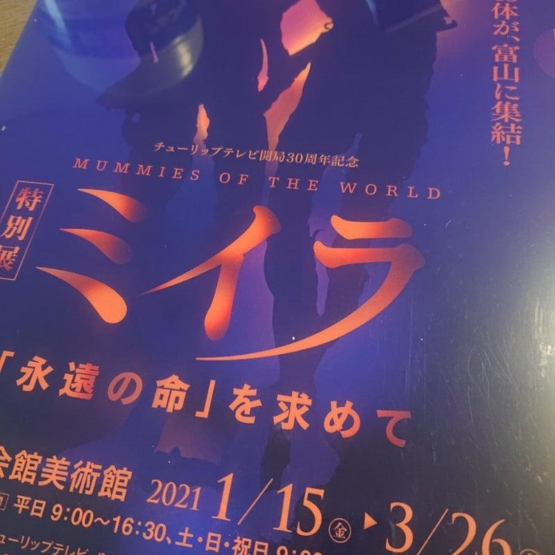 展 富山 ミイラ 【特別展ミイラ「永遠の命」を求めて】いつどこで チケットなど調べてみた