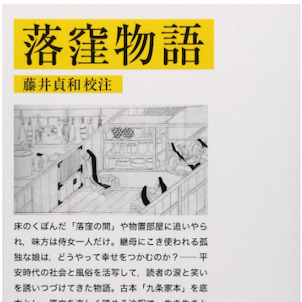 【フィフィの本棚】 落窪物語 作者不明の画像