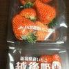 最高の 苺 イチゴの画像