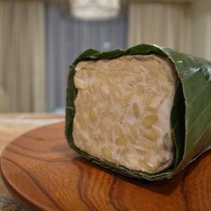 発酵食品 テンペ 054/311の画像