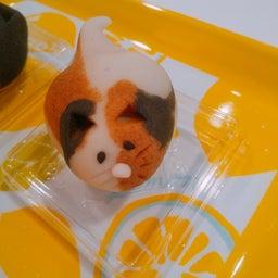 画像 まほろ堂の『猫の日限定お菓子』♪ の記事より 2つ目